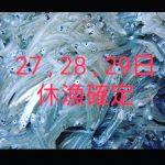 IMG_20200326_194037_233.jpg