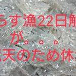 IMG_20210321_204826_034.jpg